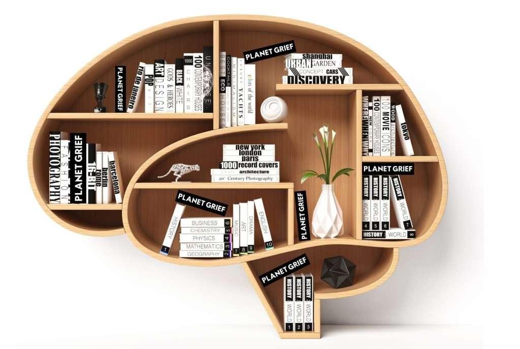 Hypnotherapy Brain Bookcase 1